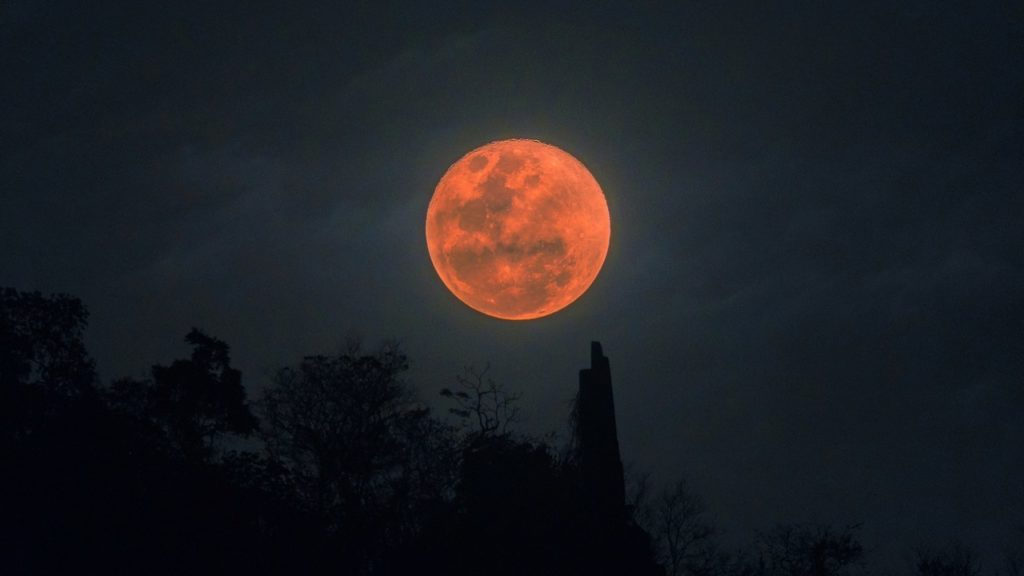 Blue flower moon to light the sky this Saturday