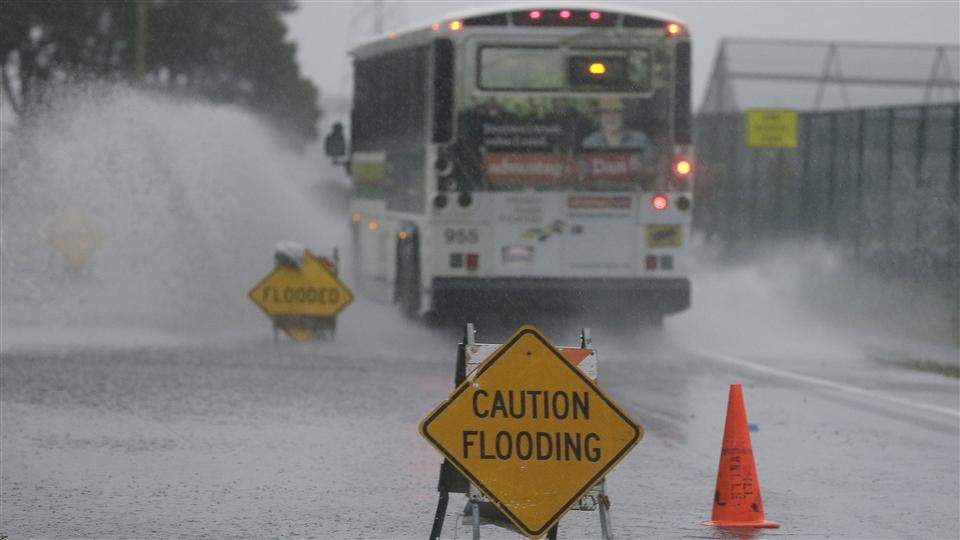 Pineapple express to drench California