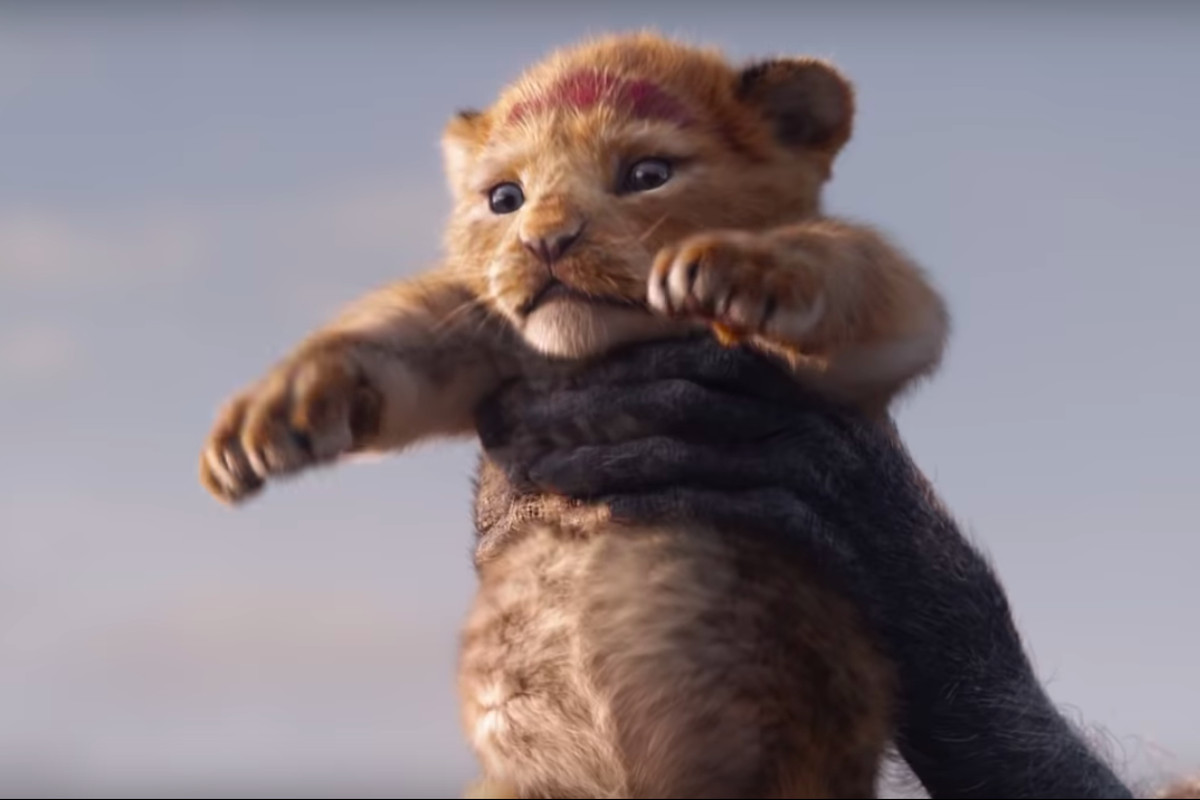 The Lion King: Baby Simba gets her moves from Bahati the cute cub