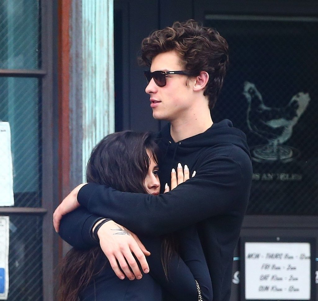 Shawn Mendes and Camila Cabello were seen hanging out together pretty much all of 4th of July week and weekend