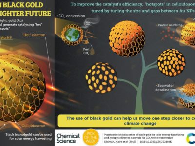 Indian scientists again outshine others, discovered 'Black Gold'
